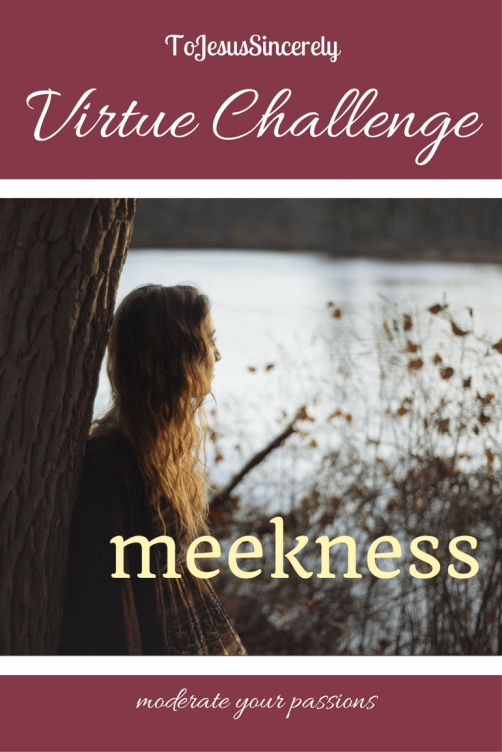 meekness virtue challenge pinterest.png