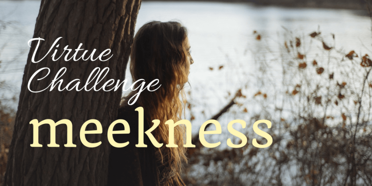 virtue-challenge-2-1