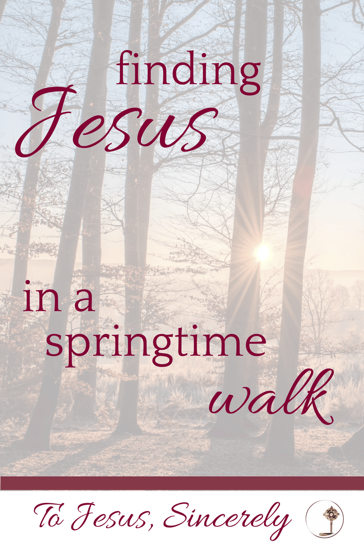 Finding Jesus in a springtime walk